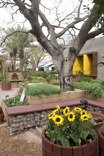 horta jardim associados : horta jardim associados:casacor_2011_paisagismos_f_016.jpg