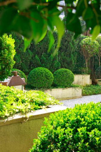 Tons de verde e texturas compõem o jardim, formado por espécies como os buxinhos (Buxus sempervirens) podados em forma de bola. Atrás deles, a