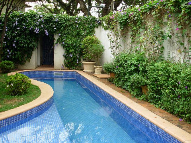 A piscinatem borda de piso cimentício, da Solarium, e revestimento interno de pastilhas Jatobá. Seu contorno dá dinamismo ao jardim, enquanto permite a formação de uma raia para natação junto ao muro, que é sublinhado por pés de tumbérgia arbustiva (Thunbergia erecta)