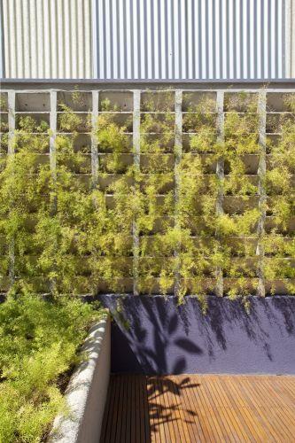 Na parede junto ao deck, em blocos de concreto vazados, abre-se espaço à vegetação, com aspargos