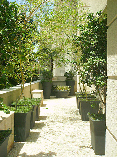 plantas jardins vasos : plantas jardins vasos:Para Vasos 30cm Plantas Jardins Rodizio Otimos Suporte Para Vasos