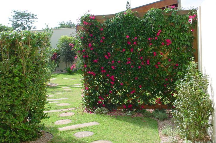 cerca para jardim vertical:Conheça opções de paisagistas para jardins com trepadeiras – Casa e