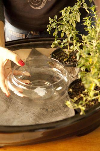 Acomode o recipiente de vidro no lugar desejado, com cuidado para não