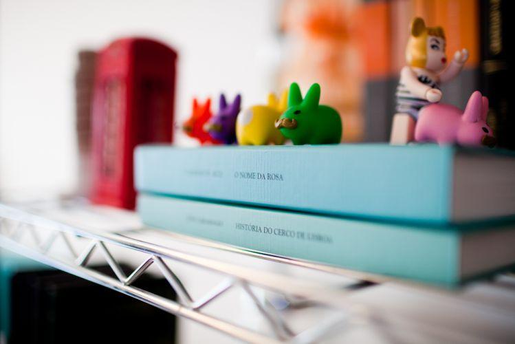 Livros e objetos decorativos variados, incluindo a coleção de toy art, estão expostos na estante aramada do living