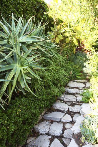 Detalhe do jardim frontal criado por Wade Graham para casa em estilo colonial espanhol, construída em 1924, em Los Angels, Califórnia. Wade Graham é paisagista, historiador e professor universitário, autor de
