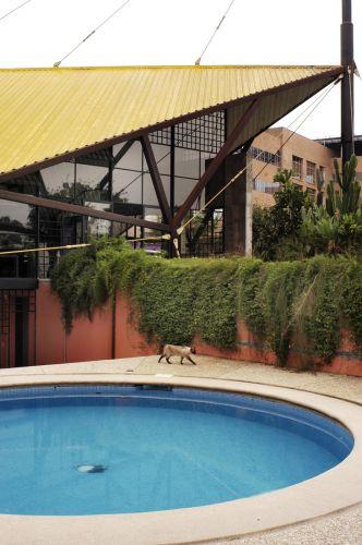 O arquiteto Carlos Bratke quebra a rigidez das linhas retas e angulosas da casa com a piscina arredondada. Como estrutura, adotou a tradicional alvenaria, revestida de pastilha de vidro Vidrotil. Na borda e no piso, usou fulget
