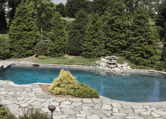 Há muito o que se considerar ao projetar uma piscina. O sistema construtivo - de concreto, alvenaria ou fibra de vidro -, o paisagismo e o sistema hidráulico são os pontos mais importantes