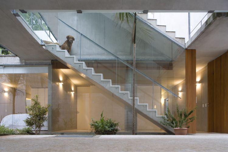 Esta escada ilustra nitidamente os dois pavimentos inferiores, que ficam abaixo do nível da rua, onde estão instalados os ambientes da habitação. Na parede atrás do cachorro está a sala. De frente para o animal, no mesmo nível da sala, depois deste vão livre, fica a cozinha e no final da escada, no piso de baixo, estão os dormitórios, que podem ser vistos através do vidro