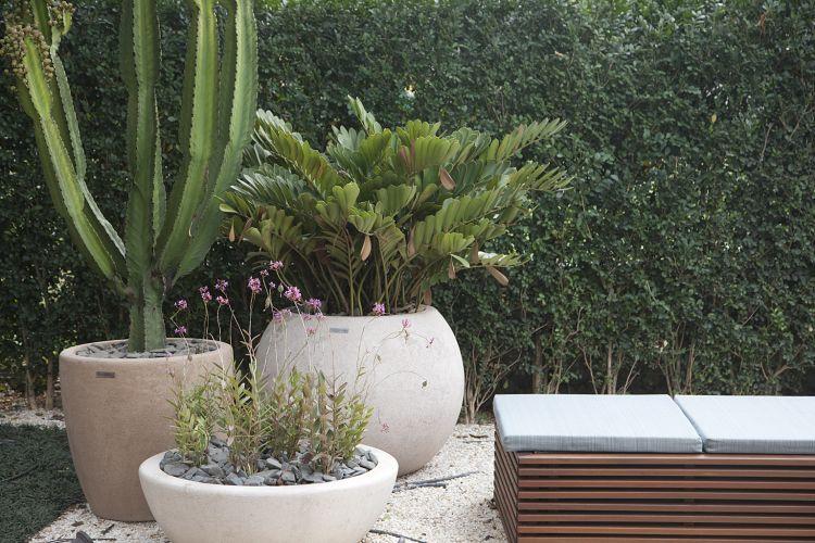 Jardim dos Cactos, criado por Marcelo Bellotto, concentra vegetais exóticos e rústicos. A Casa Cor SP fica aberta até dia 17 de julho de 20