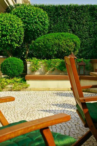 Detalhe do jardim de um apartamento térreo, em São Paulo, feito por Gigi Botelho. Nas jardineiras foram plantados buxinhos (Buxus sempervirens) com poda em forma de bola, e fícus (Ficus benjamina)