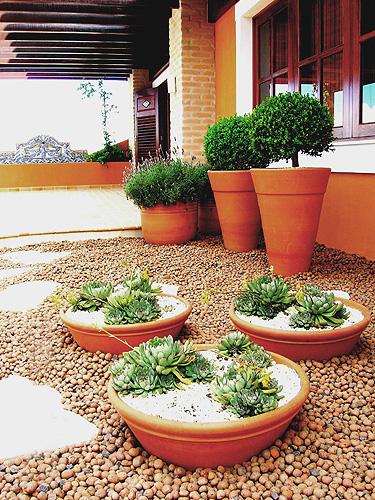 Projeto da paisagista Celeste Moraes com suculentas (em primeiro plano