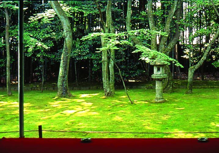 A frontalidade é um dos efeitos mais instigantes da observação dos jardins. Um cenário externo que é observado de dentro de um ambiente ou de uma varanda. Este tratamento ocorre tanto nos jardins de passeio com lago, onde a vista tem uma escala grandiosa, como nos jardins de contemplação, que são menores e mais contidos