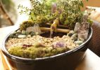 Zen: aprenda a fazer um jardim com fonte para renovar as energias - Fabiano Cerchiari/UOL