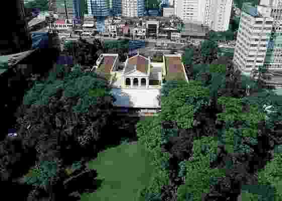 A exposição apresenta 29 árvore pertencentes ao jardim do Museu da Casa Brasileira; entre as espécies, estão as brasileiras tapiá e araribá e até estrangeiras, como o ligustro e a aglaia - Nelson Kon/Divulgação