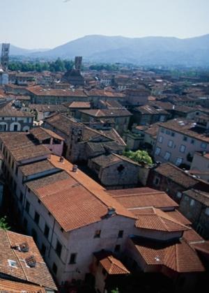 O telhado é um misto de sistema de cobertura, composto pelas telhas, e de sustentação, formado pelo madeiramento