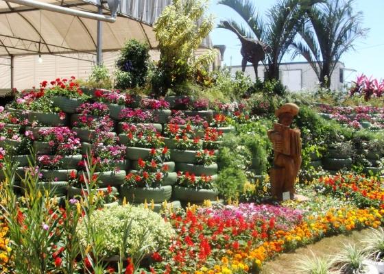 Flores expostas na última edição do festival, ocorrida entre setembro e outubro de 2009 - Divulgação