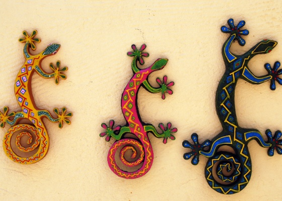 Uma casa interessante mostra a personalidade do dono e colecionar é um hobby que faz bem à alma e à decoração: que tal decorar as paredes com uma coleção de salamandras coloridas?