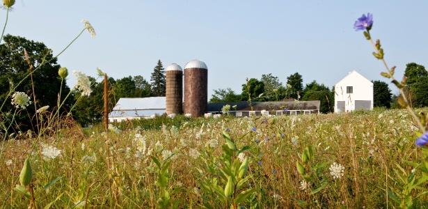 """Implantada à direita de um celeiro de 1956 e de dois silos do século 18, a casa em Lakeville, estado de Connecticut, EUA, chegou em caixas e foi """"montada"""" no terreno. Seus proprietários<br> a enriqueceram com acabamento e projeto de interiores feitos por eles mesmos - Tony Cenicola/The New York Times"""