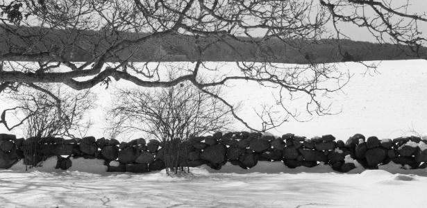 Foto de um muro de pedras construído em Martha's Vineyard, nos Estados Unidos, pela fotógrafa Mariana Cook. Muros assim são construídos há cerca de nove mil anos